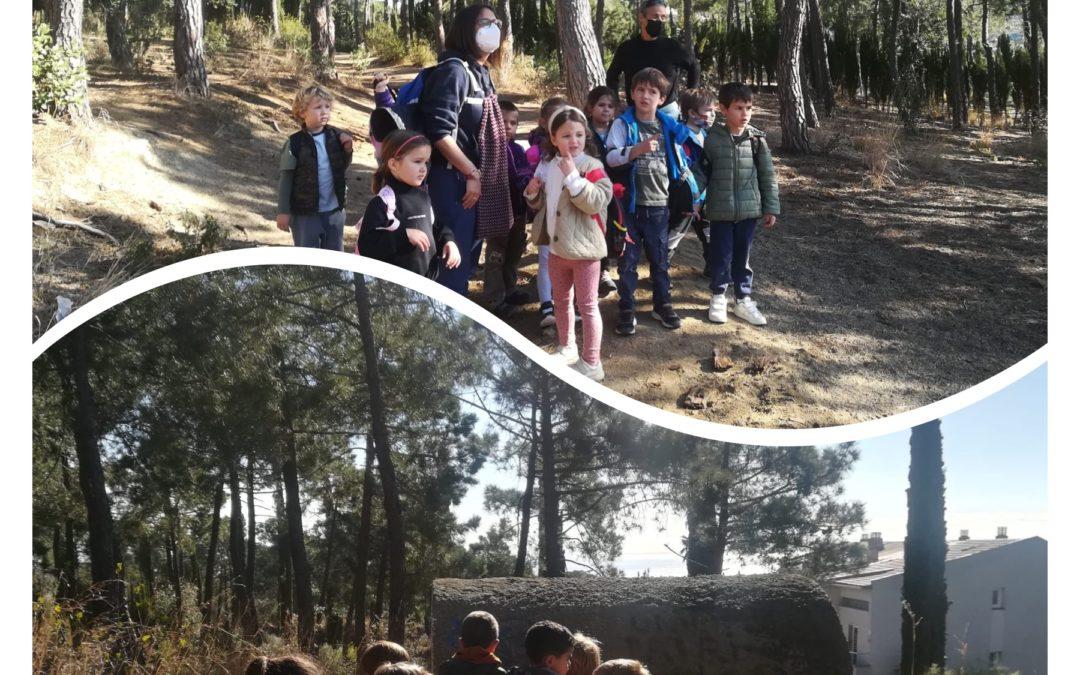 Excursió al bosc